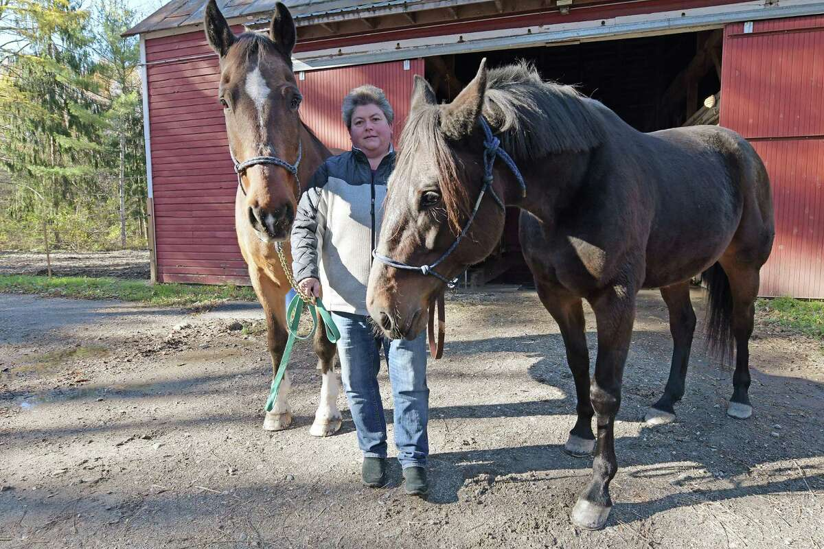 Kim Ricard holds King, left, and Manny, two of the horses with the New York State Park Police Mounted Unit on Monday, Nov. 7, 2016, in Saratoga Springs, N.Y. Ricard cares for the horses at the stables. The two horses will be retired from duty at Spa State Park. There will be no more mounted patrols at the park. (Paul Buckowski / Times Union)