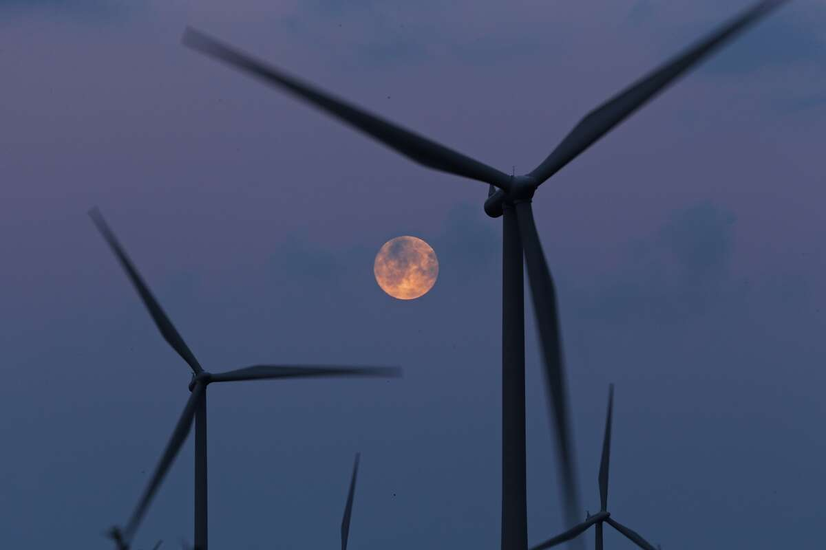 A recent study found that bats, not just birds, are victims to wind turbines. Click through to read some facts about bats.