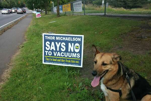 Shoreline pup Thor Michaelson campaigns for Pawcifer of Justice, representing the Vacuum Cleaner Defense League.