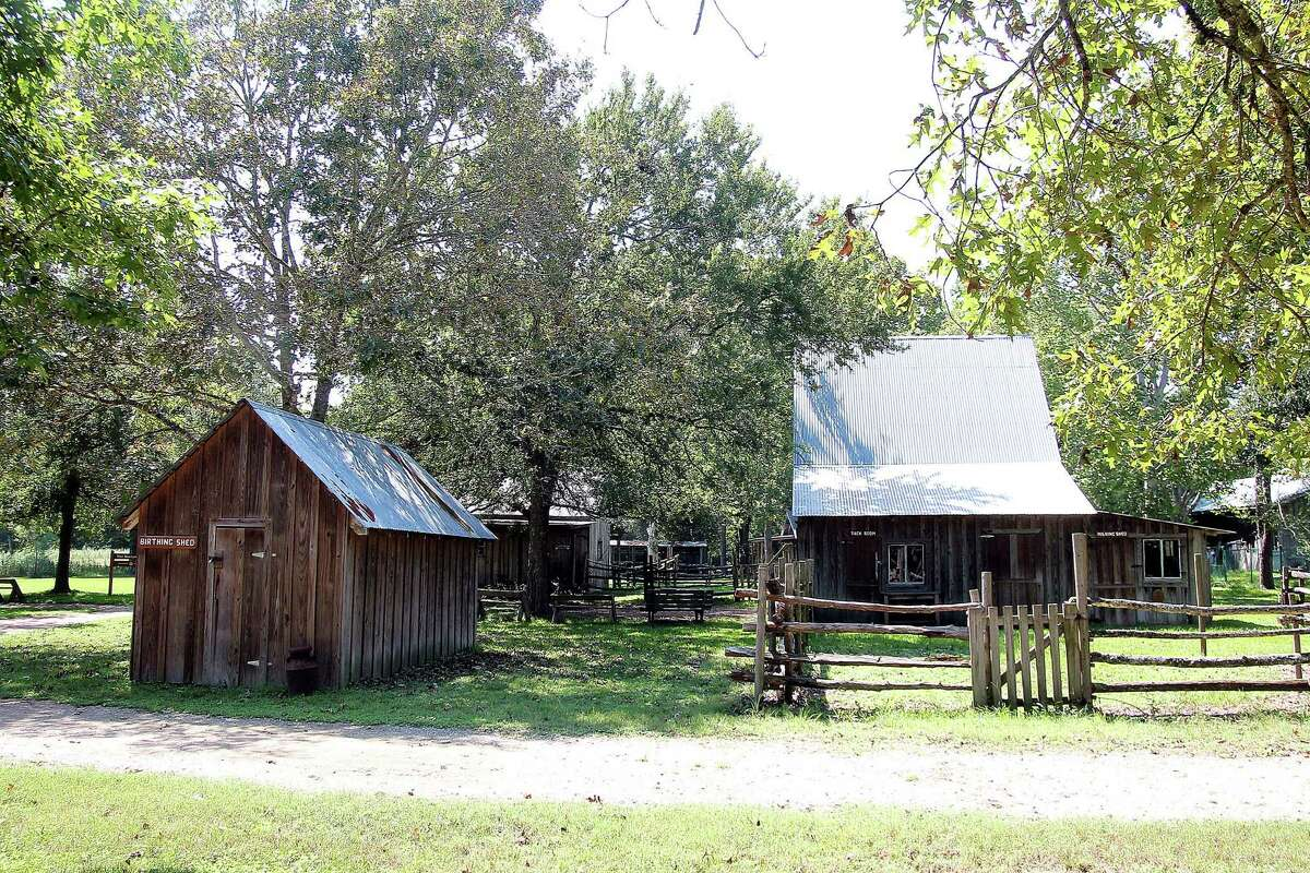 Armand Bayou Nature Center's Martyn Farm will be the site for the annual Martyn Farm Harvest Celebration, scheduled from 10 a.m. to 4 p.m. Nov. 12-13 at the center, 8500 Bay Area Blvd., Pasadena.
