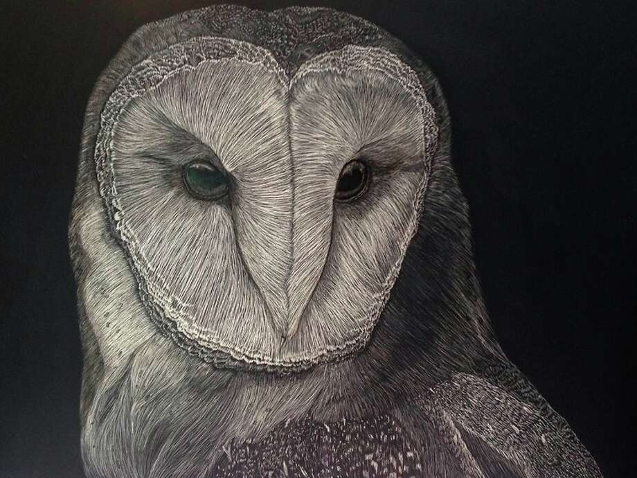 Photo provided Chandra Jennings describes her art:  'My art form is known as 'scratchboard.' This is a very old method formerly associated with wood cuts. Today, scratchboard consists of using sharp tools to scrape away a black ink coating from a white clay board.' Here is 'Haunting Hoo.'