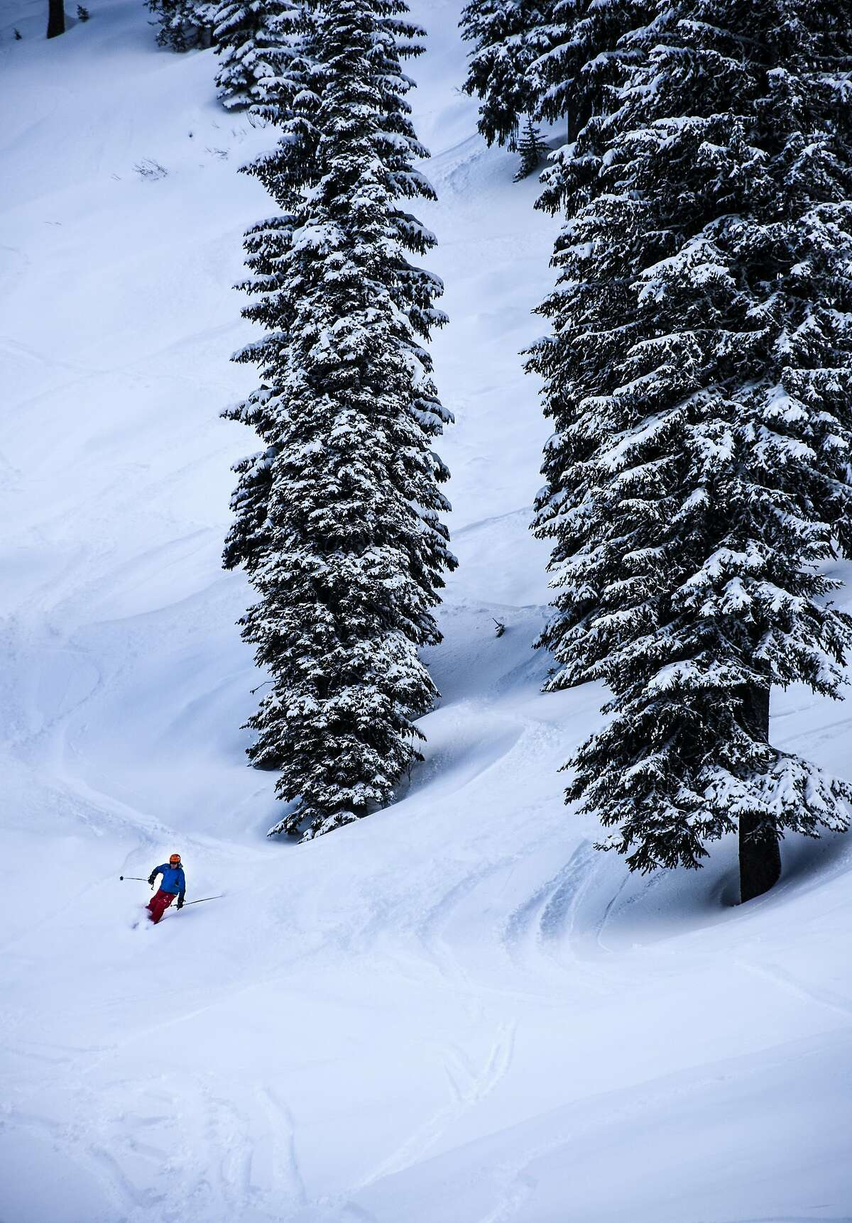 Shussing a powdery run at Whitewater Ski Resort.