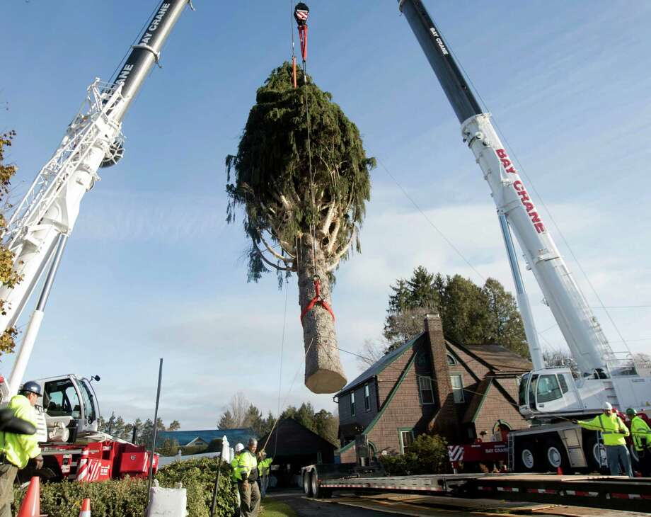 A 94-foot Norway spruce that will serve as the Christmas tree at Rockefeller Center is loaded on a truck on Thursday, Nov. 10, 2016, in Oneonta, N.Y. The spruce is due to arrive Saturday in Manhattan, about 140 miles away. (AP Photo/Mike Groll) ORG XMIT: NYMG107 Photo: Mike Groll / Copyright 2016 The Associated Press. All rights reserved.