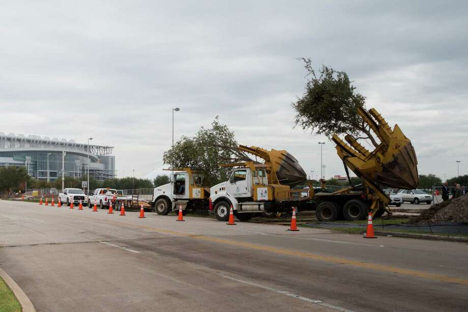 The Uptown District is donating trees from a work zone in the Post Oak area for an upgrade of NRG Park's entryway.