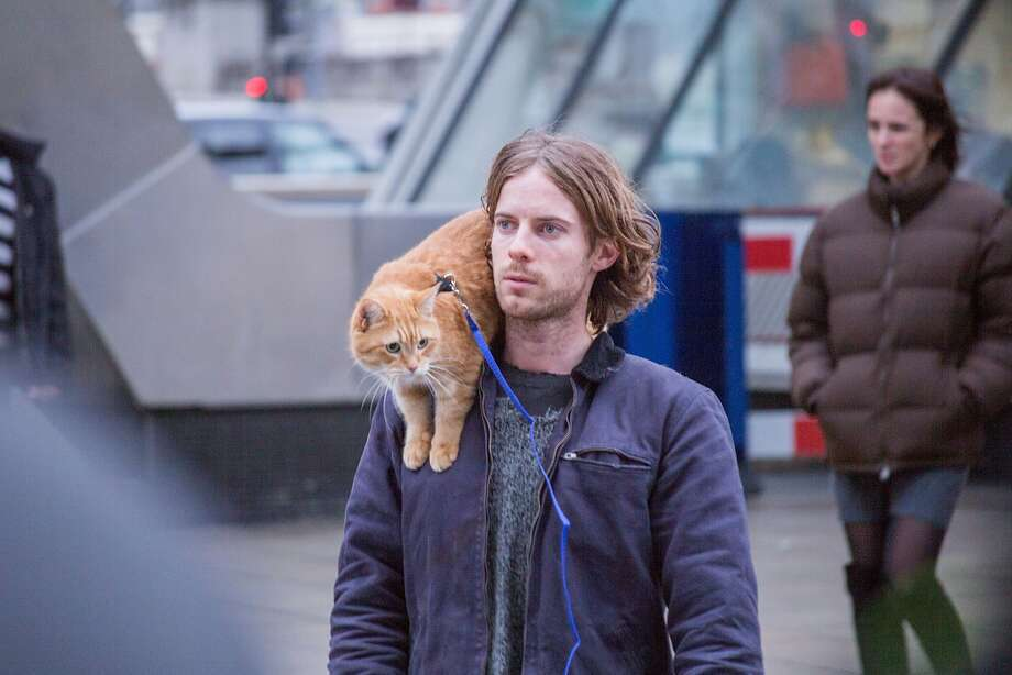 """Luke Treadaway stars with the real-life title subject of """"A Street Cat Named Bob."""" Photo: Cleopatra Films"""