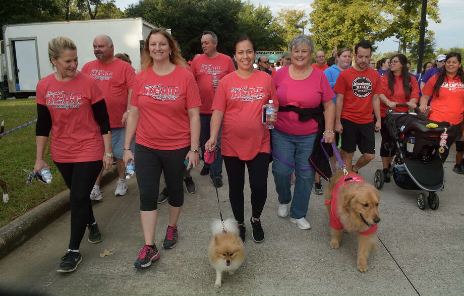 "Chris Bennett, from left, Courtney Martinez, Sandy Wood, with ""Sadie"", and Dianne Price, with ""Skye"", team-up at the start of the Greater Lake Houston Heart Walk at Lone Star College - Kingwood on Nov. 5, 2016. (Photo by Jerry Baker/Freelance) Photo: Jerry Baker, Freelance / Freelance"