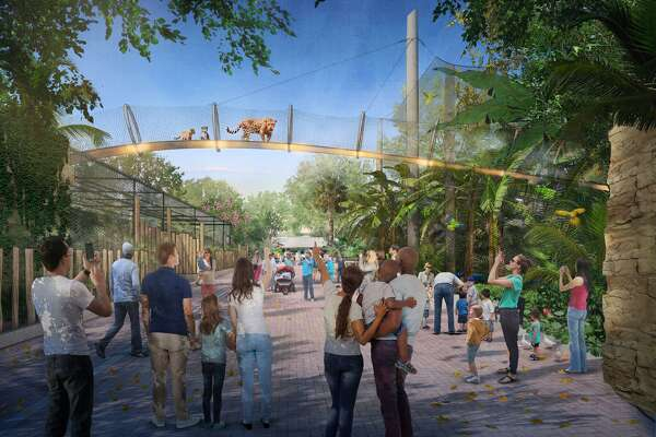 As part of ongoing improvements, the San Antonio Zoo is working toward its next project: expanding the jaguar exhibit, which will include a catwalk — the only one of its kind in a U.S. zoo — according to the zoo.