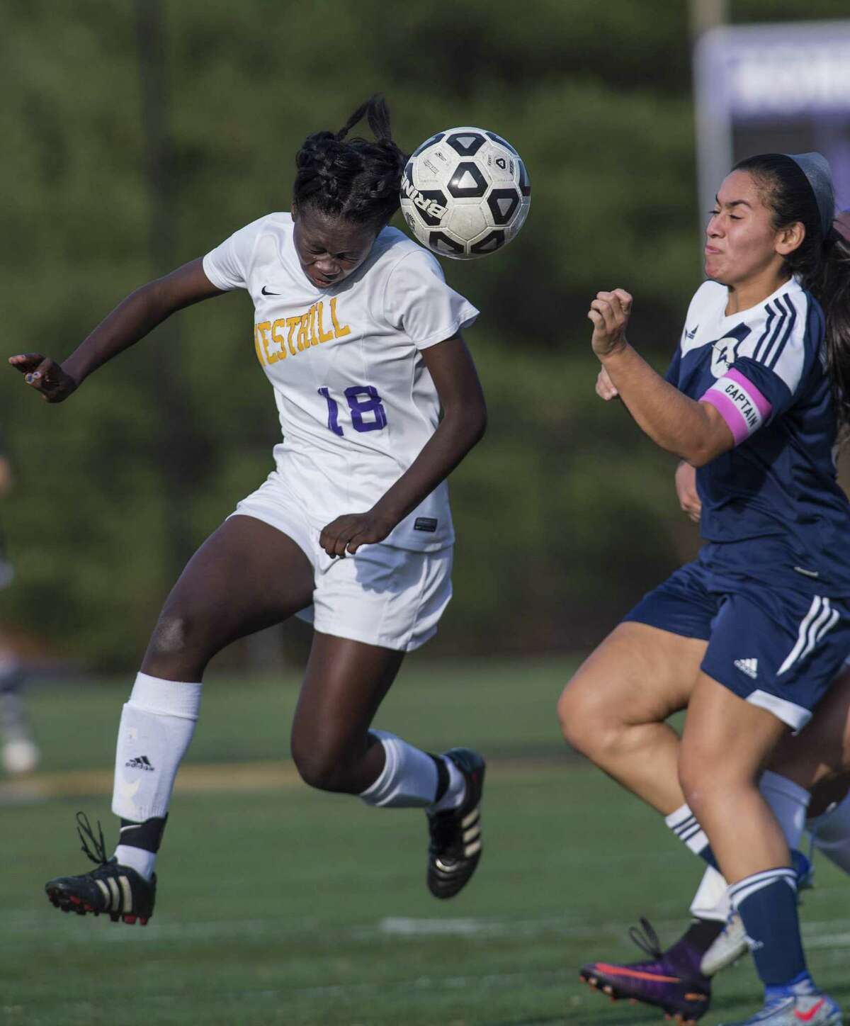 Westhill High School against Wilton High School during a CIAC class LL girls soccer tournament quarterfinal game played at Westhill High School, Stamford, CT. Monday, November 14, 2016.