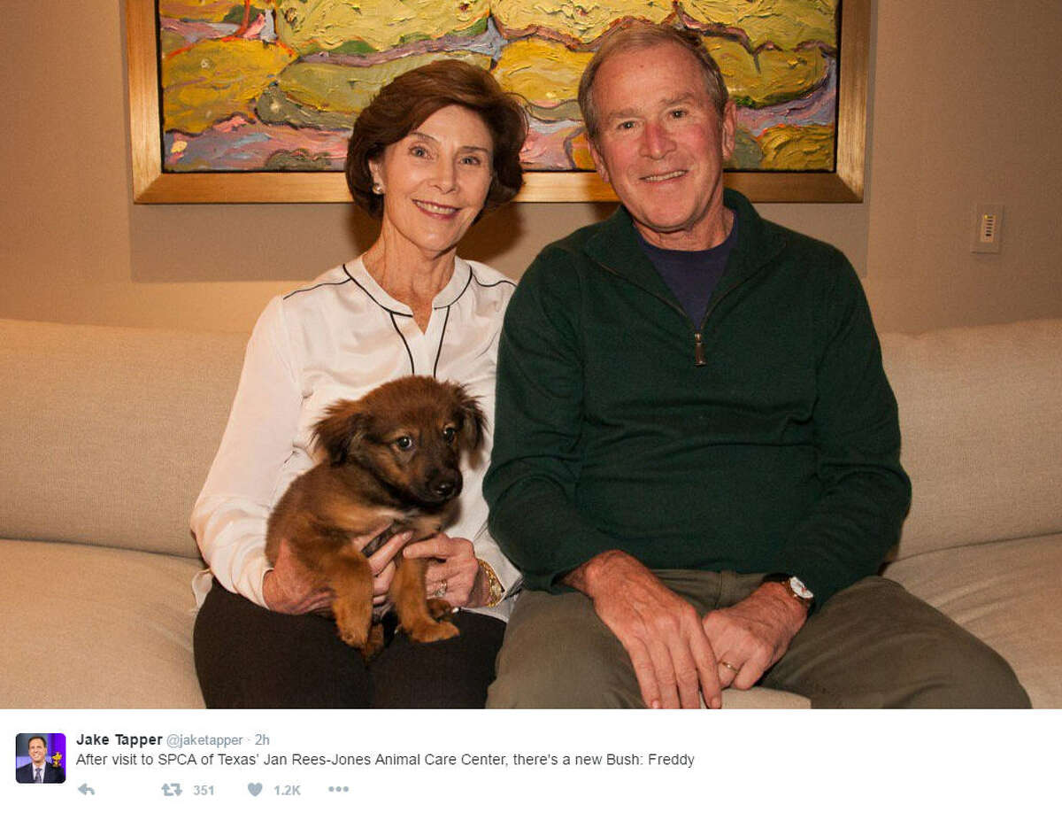 Former President George W. Bush and wife Laura got a new puppy from the SPCA of Texas Monday afternoon. Source: Twitter