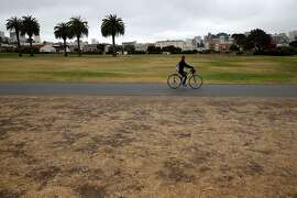 SAN FRANCISCO, CA - JULY 17:  A cyclist rides by dead grass at the Fort Mason Great Meadow on July 17, 2014 in San Francisco, California. As the severe drought in California contiues to worsen, the State's landscape and many resident's lawns are turning brown due to lack of rain and the discontinuation of watering.  (Photo by Justin Sullivan/Getty Images)