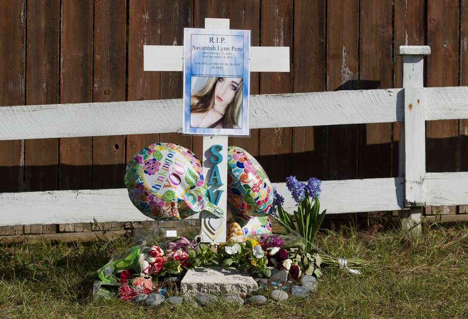 A memorial remembering Savannah Pero, a Montgomery High School sophomore, stands at Texas 105 West near the site where a car struck and killed her Thursday, Nov. 17, 2016, in Conroe. Pero and her twin sister, who was not injured, were running across 105 near April Sound when a Chevy Malibu struck Savannah on the evening of Nov. 14. Photo: Jason Fochtman/Houston Chronicle