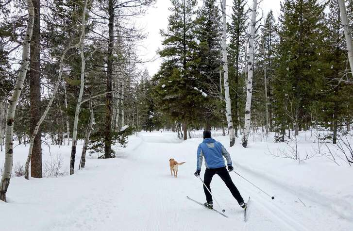 A skier and his dog on a trail at Turpin Meadow Ranch in the northwest corner of Wyoming. Six days a week, the ranch grooms about 25 kilometers of trails for classic and skate skiing.