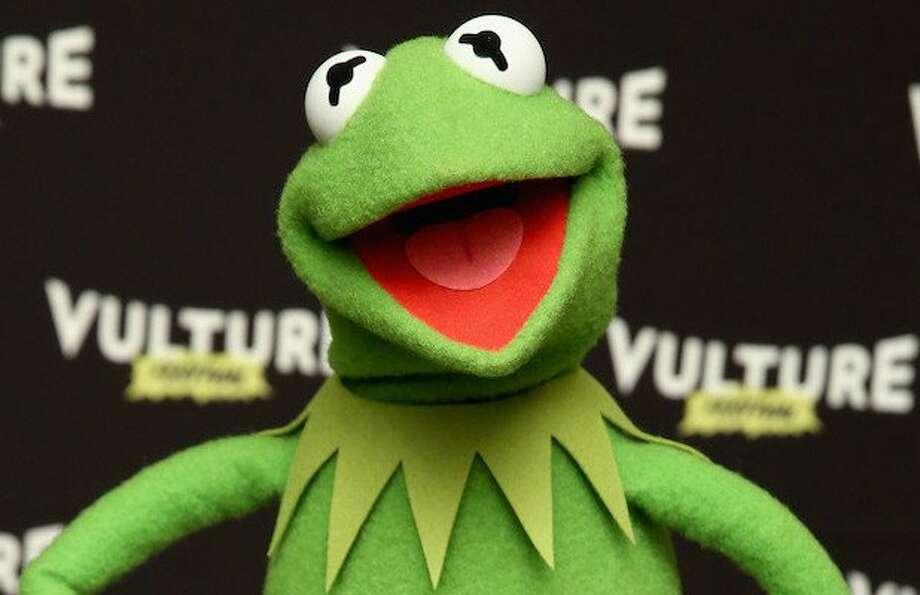 13 Best Evil Kermit The Frog Memes Photos Houston