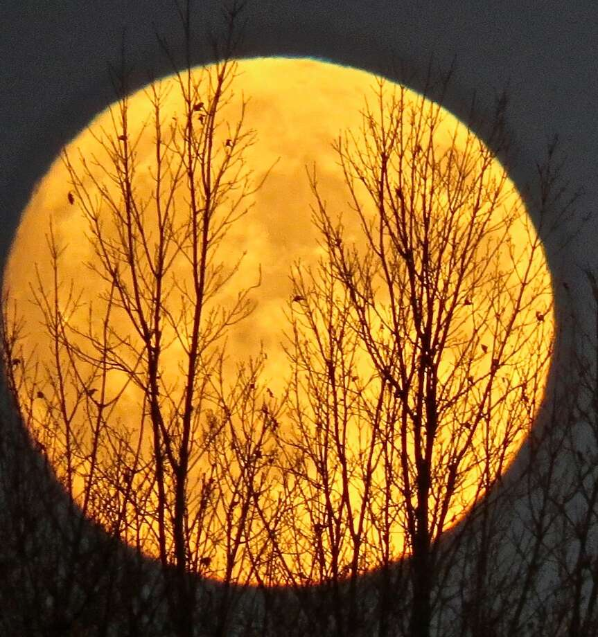 The supermoon came out Sunday and Monday — and so did the photographers. This one is from Lynne Harding taken from the Ooms Conservation Area in Chatham. (Lynne Harding)