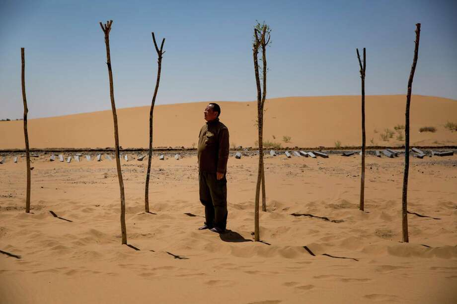 Guo Kaimin stands between trees he planted to help hold back the sand in the Tengger Desert in China. Guo, a farmer, also manages a sand sculpture park on the edge of the expanding desert landscape. Photo: JOSH HANER, STF / NYTNS