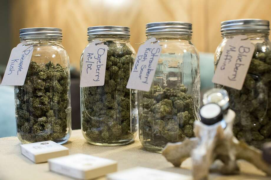 Cannabis from Herba Buena is seen on display during an event at Harvest, a medical marijuana dispensary in the Inner Richmond District, in San Francisco, Calif., on Saturday, November 19, 2016. Photo: Laura Morton, Special To The Chronicle