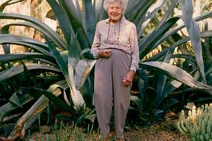 Ruth, age 96, among a clump pf agave in 2004.�--Taken from�The Bold Dry Garden�� Copyright 2016 by Johanna Silver and The Ruth Bancroft Garden. All rights reserved. Published by Timber Press, Portland, OR. Used by permission of the publisher.