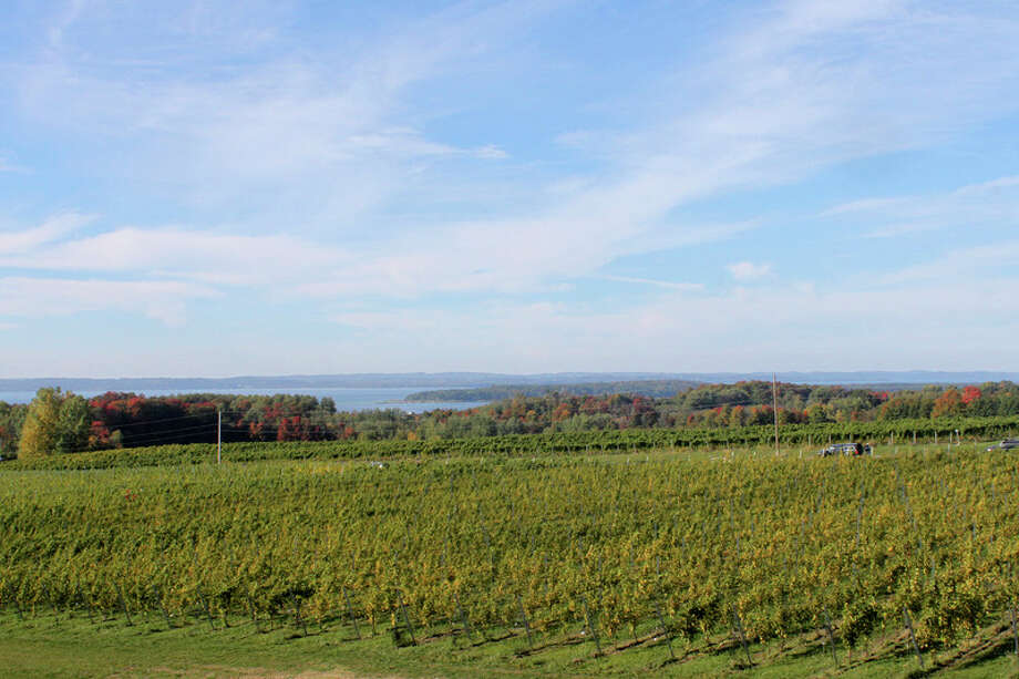A view of Grand Traverse Bay and the vineyards at Bonobo Winery, looking from the patio. The winery is located on Old Mission Peninsula, just north of Traverse City. Midland native Caroline Oosterhouse owns the winery with husband, Todd, along with Todd's brother, Carter, and his wife, Amy.