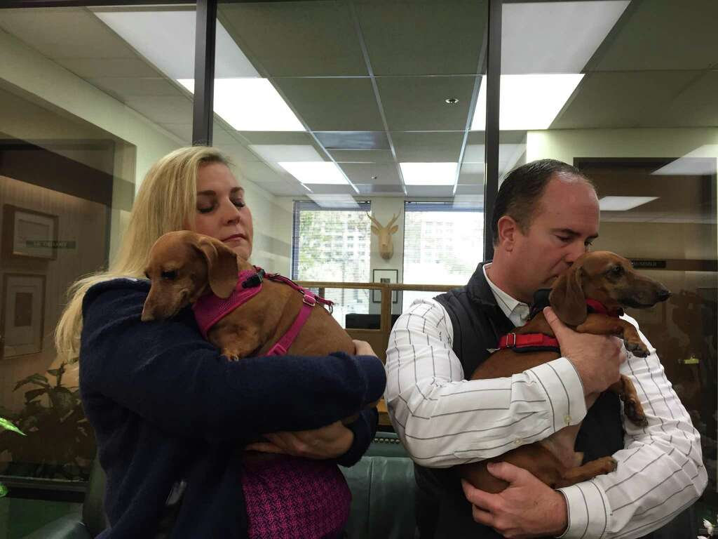 Stefan Zier and Terrie Peacock hold their dogs Tony and Bella at a news conference Tuesday. Photo: Sarah Ravani / The Chronicle / Sarah Ravani / The Chronicle