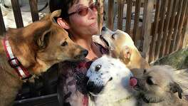 At Katie's Roadside Rescue outside San Antonio, dogs are vaccinated, spayed or neutered and microchipped before they're offered for adoption. Katie Boggs said it costs her organization $220 to get a healthy dog ready for adoption, against an adoption fee of only $170.