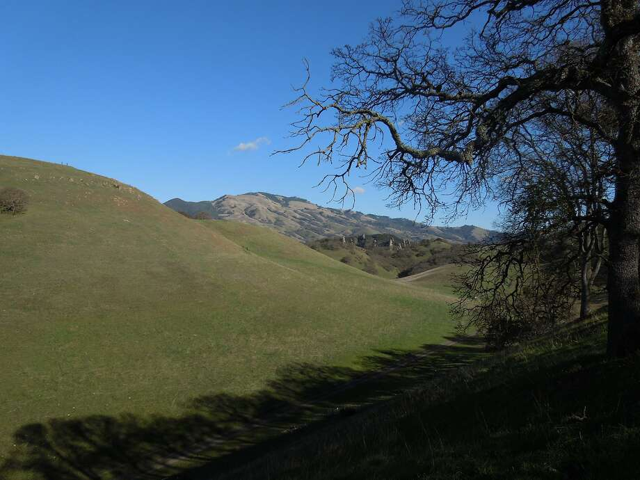 The view from Buckeye Hill at Shell Ridge, a view down the Briones-to-Mount Diablo Trail to the arrow spires of Castle Rocks -- with more geologic formations in the area -- and beyond to Mount Diablo State Park Photo: Brian Murphy