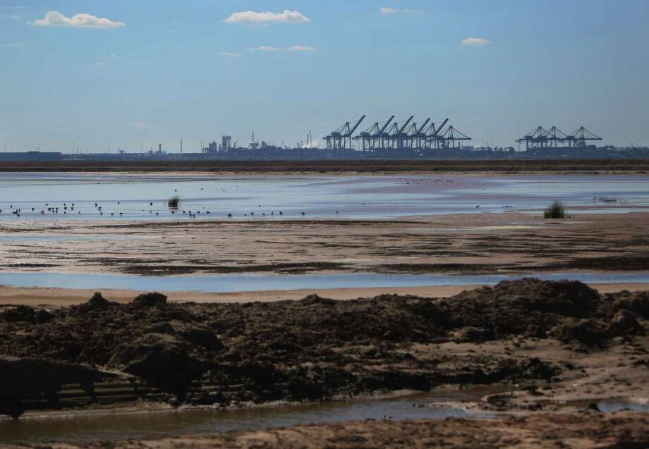The cranes of the Bayport Container Terminal can be seen across Placement Area 15 where material from dredging the Houston Ship Channel is deposited, Monday, Nov. 21, 2016, in Houston. The dredged material is being turned into marsh areas in conjunction with containment areas surrounded by levies.  ( Mark Mulligan / Houston Chronicle ) Photo: Mark Mulligan, Staff / © 2016 Houston Chronicle