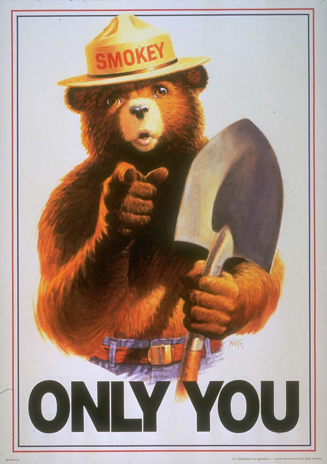 The fire prevention campaign featuring Smokey Bear has been running since the 1940s. It received a living symbol with the rescue of a bear cub from a New Mexico forest fire in 1950. Photo: Time Life Pictures, Contributor / Time Life Pictures