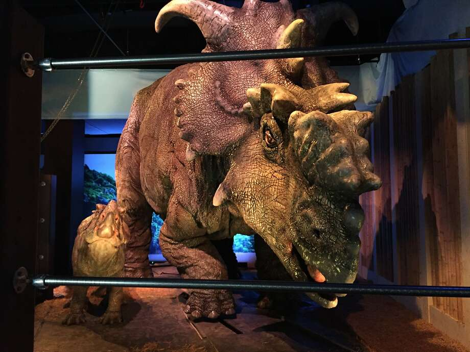 A pachyrhinosaurus and her offspring are part of the Jurassic World petting zoo exhibit at Philadelphia's Franklin Institute. Photo: Josh Cornfield, Associated Press