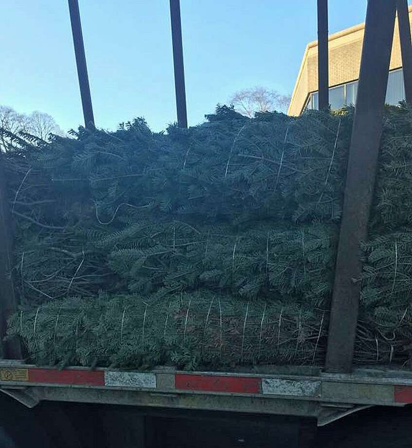 Local Christmas Trees: Trumbull Firefighters Selling Christmas Trees