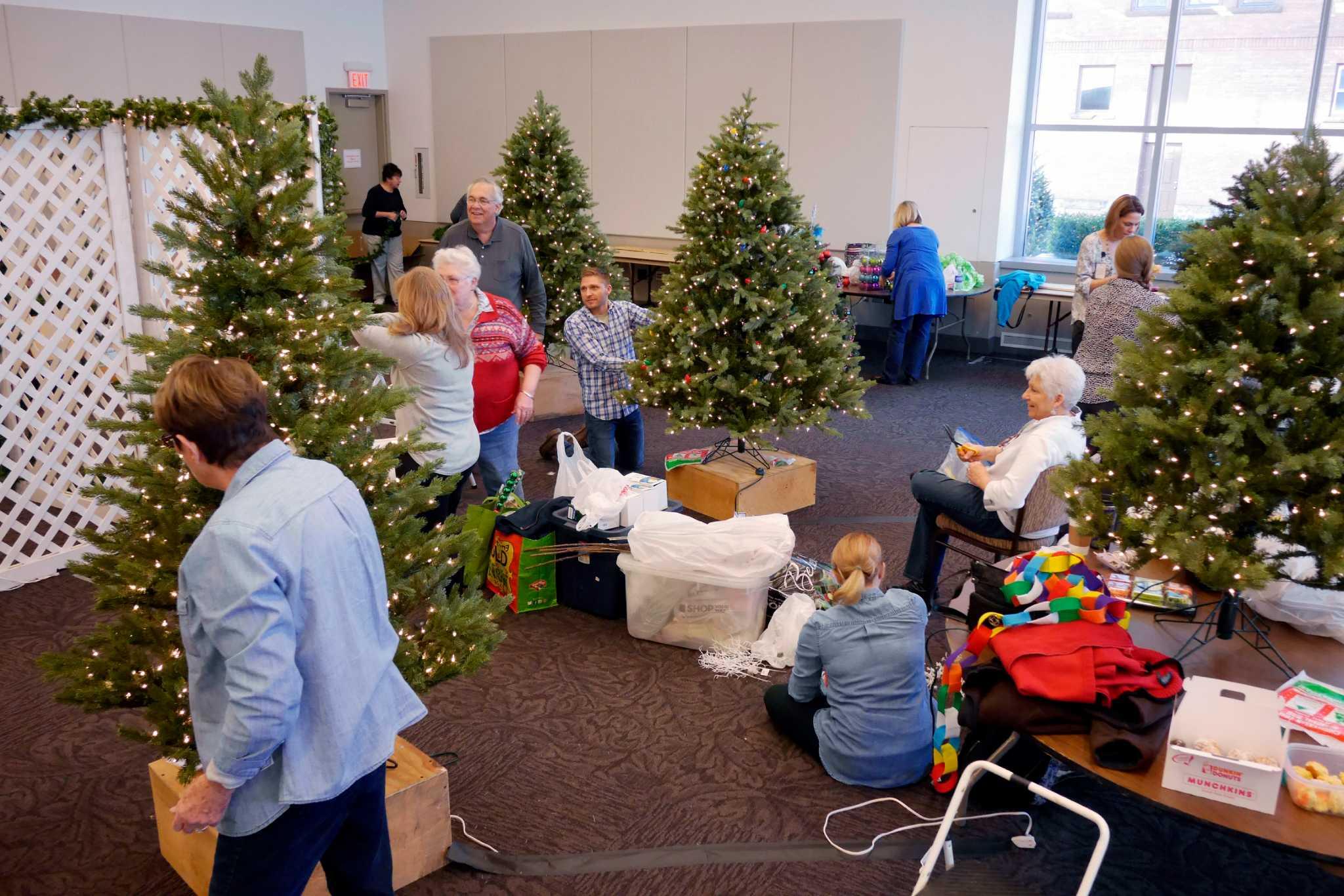 Photos: Christmas trees ready for Saratoga festival - Times Union
