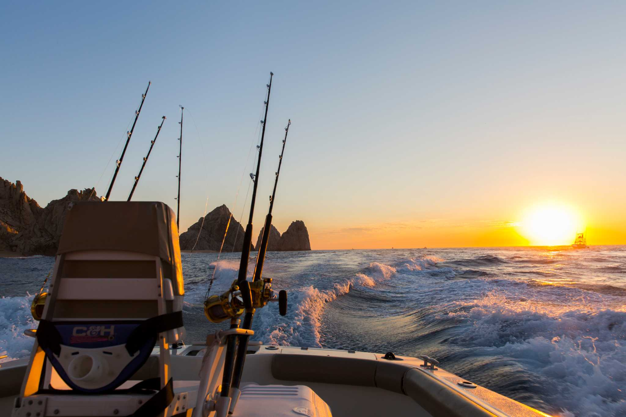 In cabo san lucas fishing for marlin reels in the soul of for Marlin fishing cabo
