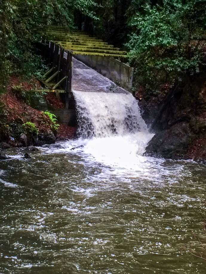 Water rushes down the spillway as it is released from the Lagunitas reservoir in Fairfax, Calif., in November 2016. After an especially wet early rainy season, the reservoir had already reached full capacity by late November. Photo: Marin Municipal Water District