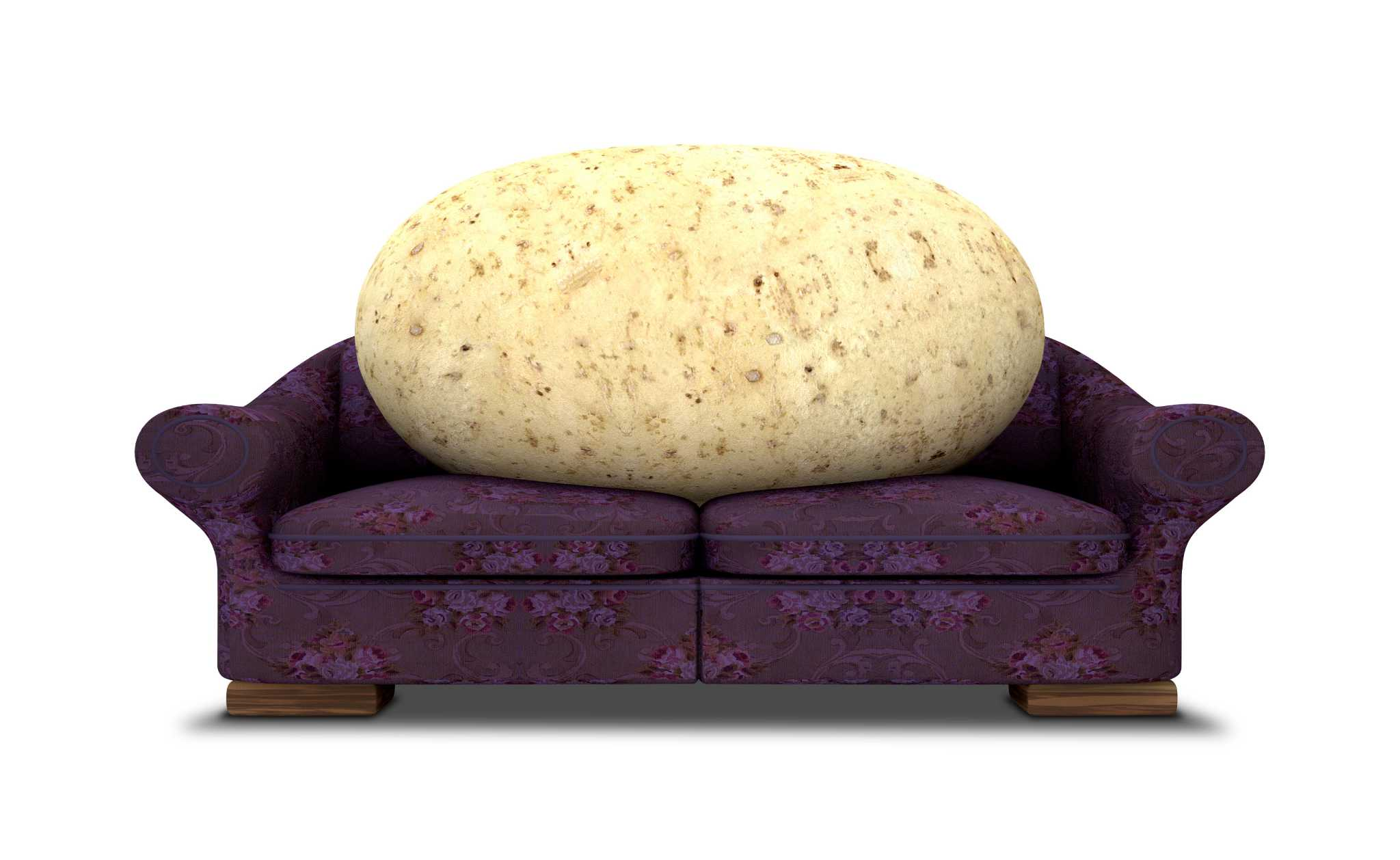 The lessons of couch potato investing Houston Chronicle
