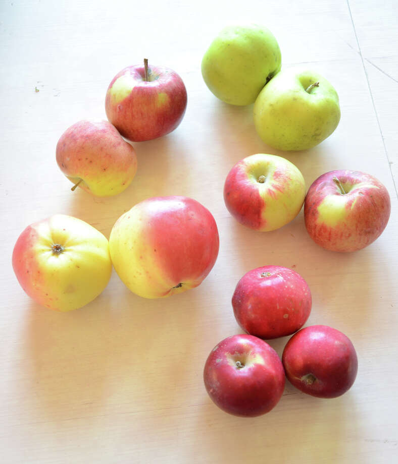 At local farmers markets, you can sometimes find apples with unusual names and stories behind them. Clockwise from top right : Rhode Island Greening, Calville Blanc d'Hiver, Cortland, Winter Banana and Victoria Sweet. Illustrates HOMEFARM (category l), by Barbara Damrosch, special to The Washington Post. Moved Thursday, January 22, 2015. (MUST CREDIT: Barbara Damrosch.) Photo: DAMROSCH / THE WASHINGTON POST