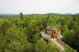The 'Wild Walk' offers a different perspective of the Adirondacks.