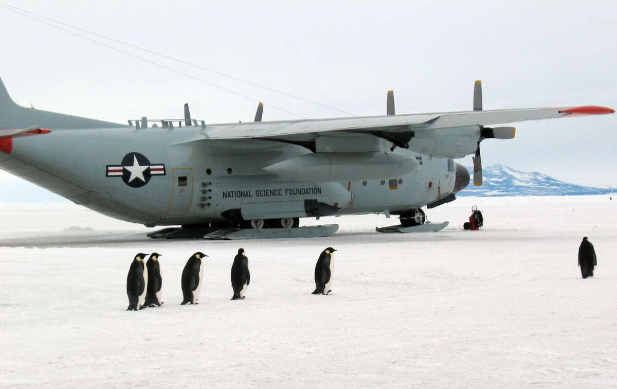 The U.S. Attorney's office says three Air National guardsmen with ties to the 109th Airlift Wing in Scotia were caught in a weapons smuggling conspriacy. In this photograph, a sextet of Emperor penguins strolls past a CL-130 ski plane parked on an ice runway at McMurdo Station during the 109th Airlift Wing's 2006-07 mission in Antarctica.