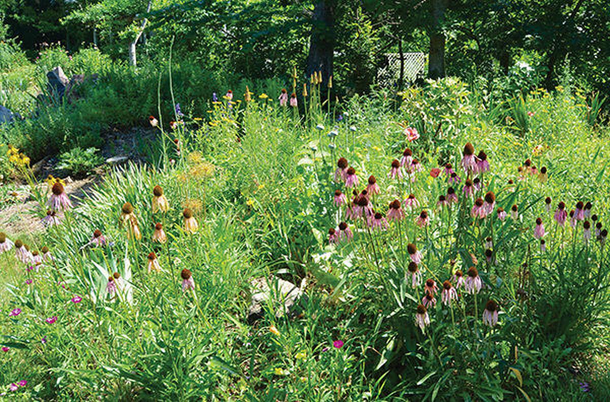 Botany Bob Garden's, owner Bob Grinstead, 204 Creek Street
