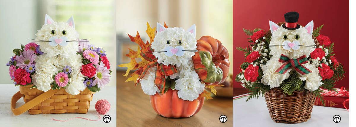 Fabulous Feline™ by 1-800-Flowers.com Fabulous Feline™ for Fall Christmas Caroling Cat™ (NAPS)