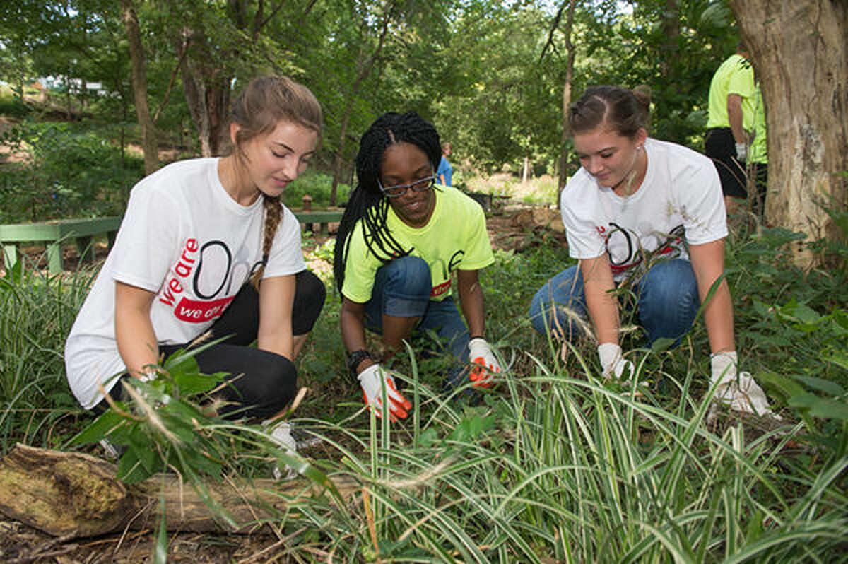 Shown are a few SIUE students who were among the 550 volunteers who worked Saturday, Aug. 20 on various community projects in the Metro East area.