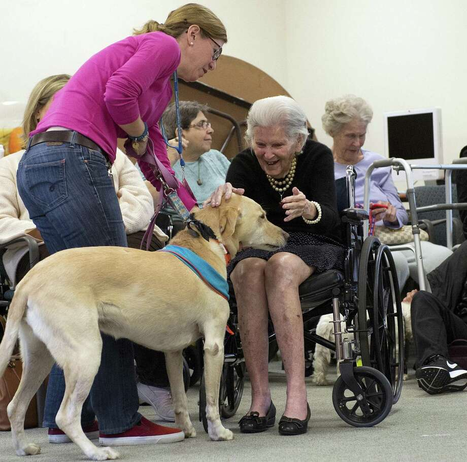 "Residents of Nathaniel Witherell Nursing Home in Greenwich, Conn. during a ""pooches on parade"" event in October 2016. Connecticut is considering encouraging local municipalities to allow ""granny pods"" on residential properties — temporary ""tiny homes"" for people requiring ongoing care from family members who prefer the autonomy of independent living to the environment of a convalescent home. Photo: Lindsay Perry / For Hearst Connecticut Media / Greenwich Time Freelance"