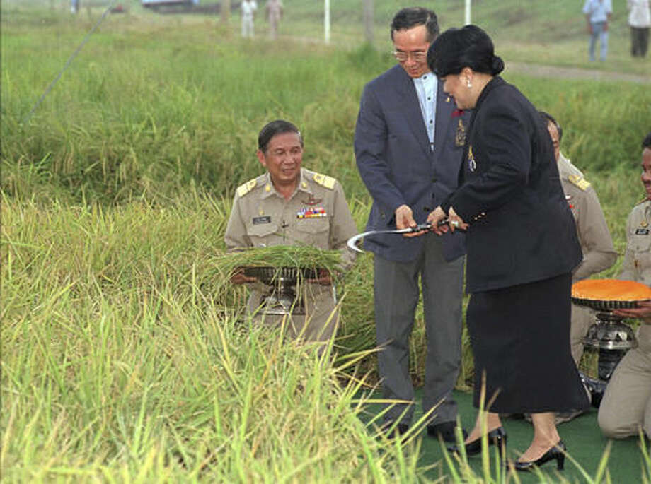 FILE - In this May 14, 1996, file photo, Thailand's King Bhumibol Adulyadej and Queen Sirikit hold a sickle during a rice harvesting ceremony in Ayuthaya, 70 km (44 mi) north of Bangkok. Thailand's Royal Palace said on Thursday, Oct. 13, 2016, that Thailand's King Bhumibol Adulyadej, the world's longest-reigning monarch, has died at age 88. (AP Photo/Charles Dharapak, File)