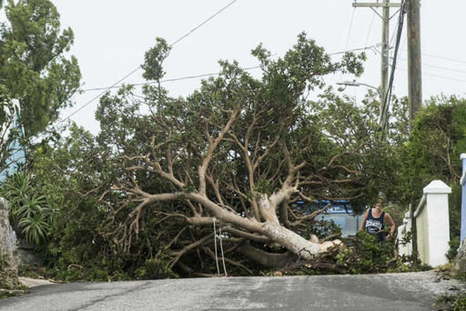 An area resident attempts to pass a tree downed by the high winds of Hurricane Nicole, in St. Georges, Bermuda, Thursday, Oct. 13, 2016. Hurricane Nicole roared across Bermuda, pummeling the resort island with winds up to 115 mph that snapped trees and peeled off roofs before the storm spun away into open water. (AP Photo/Mark Tatem)