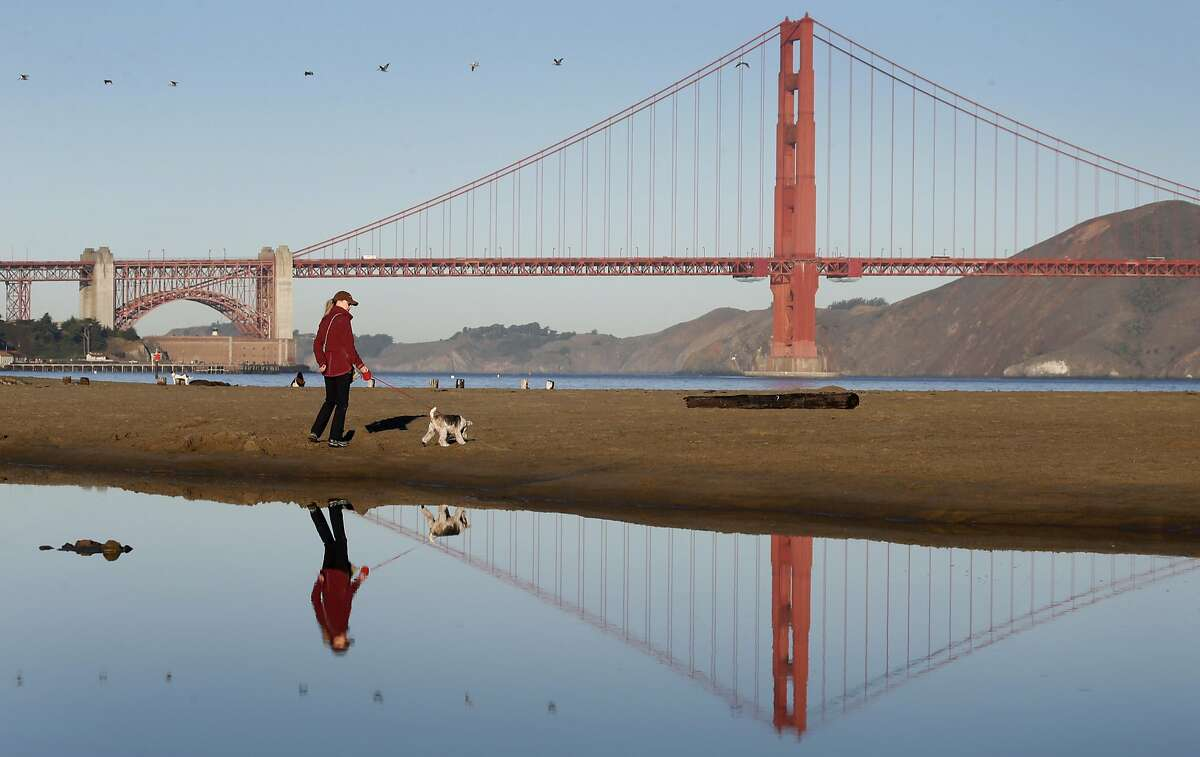 Daphne Stumpel walks on the beach with her dog Gigi at Crissy Field in San Francisco, Calif. on Thursday, Oct. 20, 2016. A gray whale carcass washed ashore at Crissy Field on Wednesday morning and was quickly removed to enable veterinarians to find out why it died.
