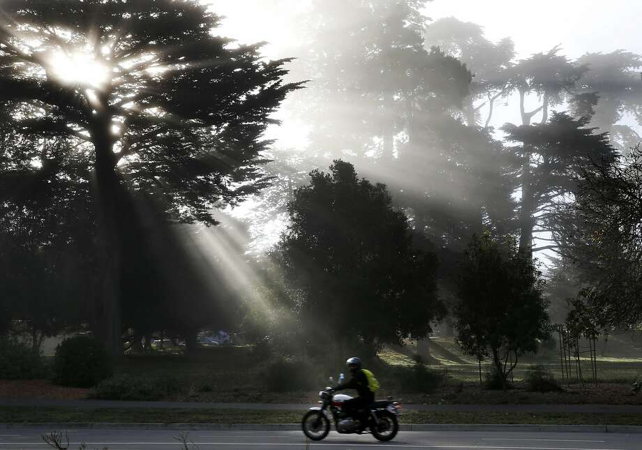 Sunrays peek out from a tree as a motorcyclist rolls through Golden Gate Park in San Francisco, Calif. on Friday, Oct. 21, 2016.  Photo: Paul Chinn, The Chronicle
