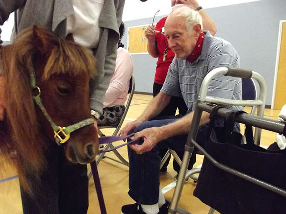 A mini-horse visits with a participant in St. John's Adult Day Program.