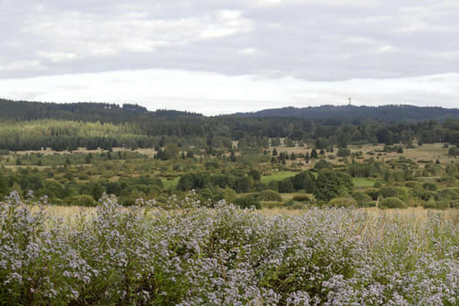 This picture taken on Wednesday, Sept. 21, 2016, shows a view of the Brdy reserve in Brdy, Czech Republic. A former military zone near Prague which the army used to do artillery training has been turning into a protected nature reserve and opening to the public after almost a century with a big politics decision behind it. (AP Photo/Petr David Josek)