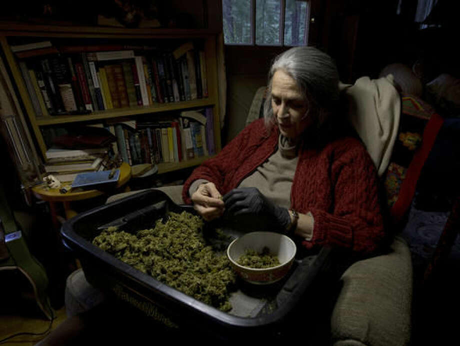 """In this Thursday, Oct. 13, 2016 photo, Nikki Lastreto trims """"little buds"""" from last season's harvest at her home near Laytonville, Calif. Lastreto and her husband, Swami Chaitanya, who grow their """"Swami's Select"""" medical marijuana, support the passage of Proposition 64, the Nov. 8 ballot initiative, which would legalize the recreational use of marijuana. (AP Photo/Rich Pedroncelli)"""