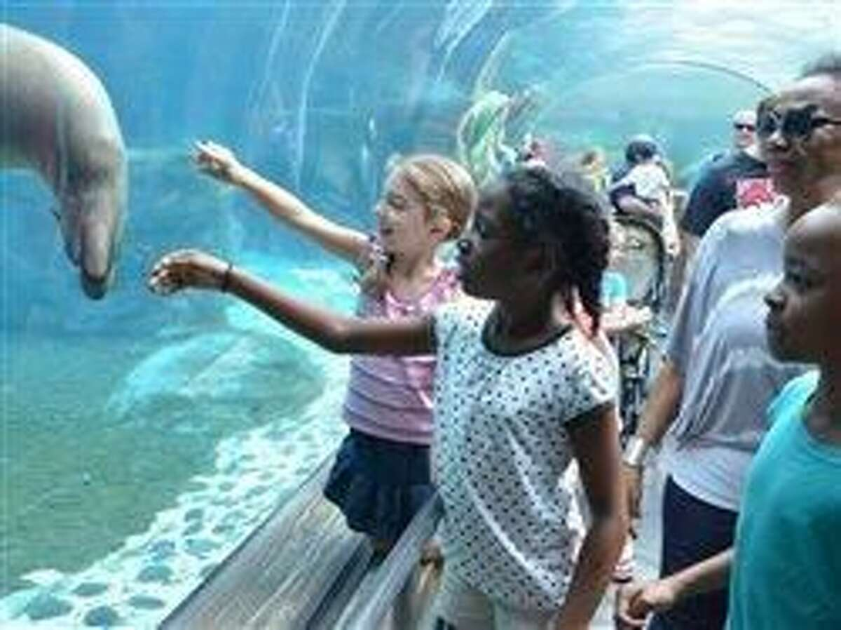 Get adventurous with these 5 fun family activities