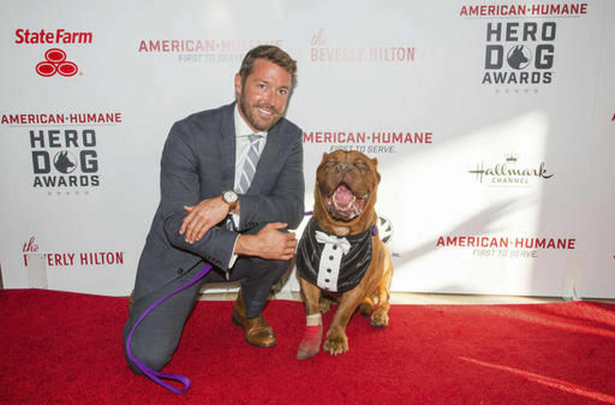 In this Sept. 10, 2016 photo released by Crown Media, Zach Skow poses with his French Mastiff named Hooch on the red carpet at the 2016 American Humane Association's Hero Dog of the Year in Beverly Hills, Calif. The American Humane Association will honor Hooch as Hero Dog of 2016 on Oct. 28 on the Hallmark Channel. (Gabriel Olsen/Crown Media United States via AP)