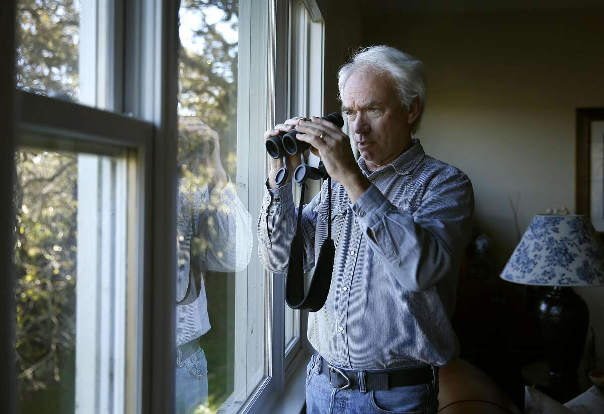 Monte Deignan observes a coyote pack from the living room of his home in Larkspur, Calif. on Friday, Dec. 2, 2016. A community meeting to discuss coexistence between humans and coyotes will take place on Dec. 12 in Corte Madera.